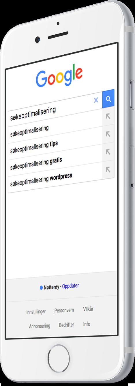 Google Søkeoptimalisering